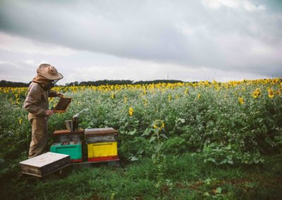 Beekeeper with Hive and storm clouds