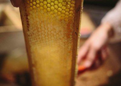Honey Super Frame