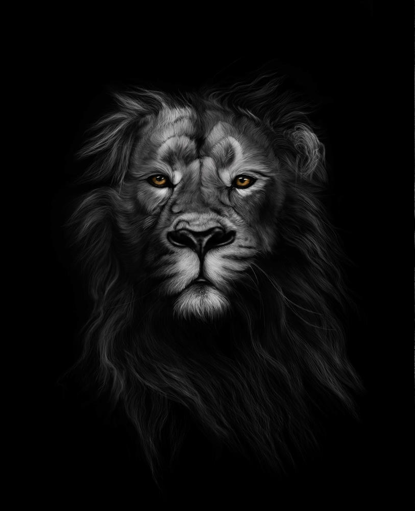 A black and white painting of a lion