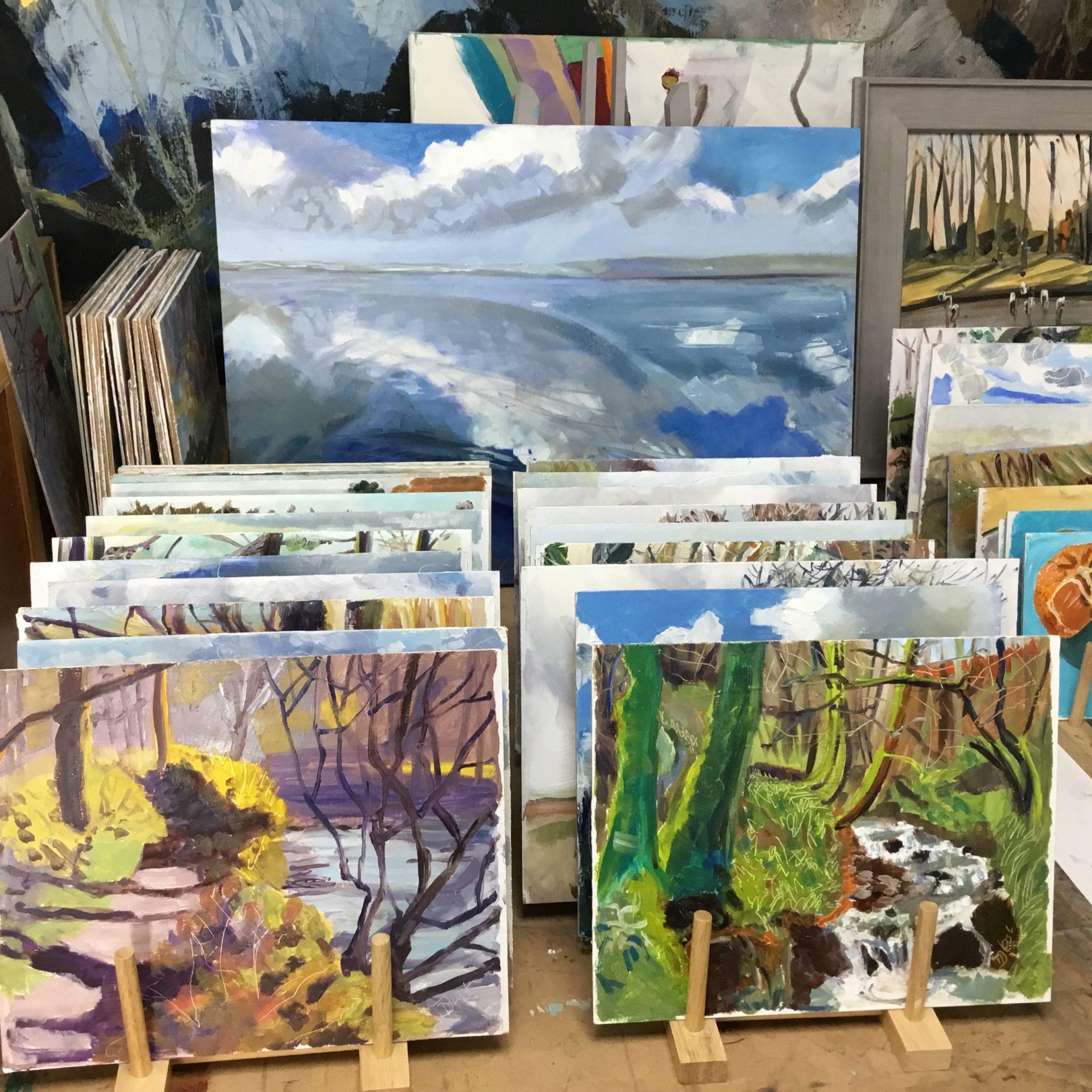 photograph of many of Deborah Last's paintings
