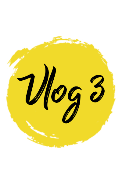 Vlog 3 – Project Update